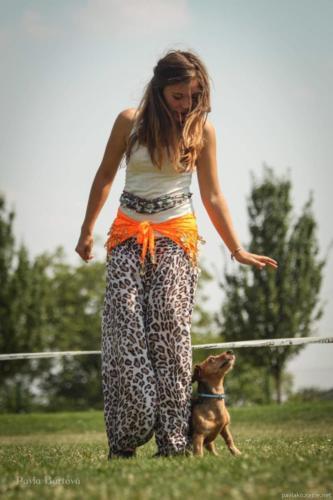 dogdancing-11