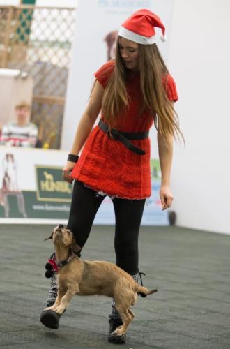 dogdancing-12